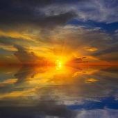 Nice sunshine — Stock Photo