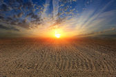Sunset over ploughed field  — Stockfoto