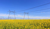 Height voltage power line — Stockfoto
