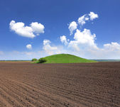 Green hill on agricultural field  — Stock Photo