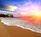 Sunshine over sea shore — Stock Photo