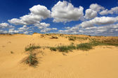 Sands in desert — Stock Photo