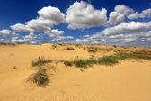 Sands in desert — Stock Photo