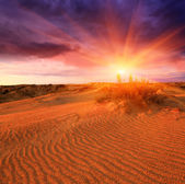 Sunset in sands — Stock Photo
