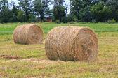 Hooi rolt op landbouwgebied — Stockfoto
