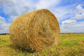Haystack on the filed — Stock Photo
