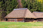 Traditional ukrainian wooden house — Stock Photo