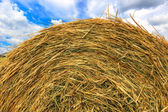 Hay stack close-up on sky background — Stock Photo