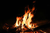 Camp fire in dark night — Stock Photo