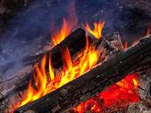 Flame of burning woods — Stock Photo