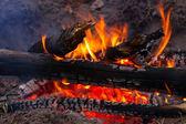Burning wods — Stock Photo