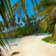Untouched tropical beach — Stock Photo #12302702