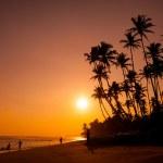 Beautiful tropical sunset — Stock Photo #12302703