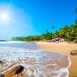 Tropical beach — Stock Photo #12326499
