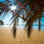Tropical beach — Stock Photo #12326537