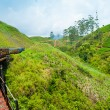 Riding by train in Sri Lanka — Stock Photo