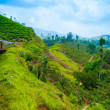 Riding by train in Sri Lanka - Stock Photo