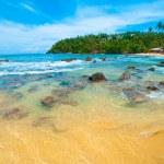 Tropical beach — Stock Photo #12438228