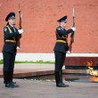 Hourly change of the Guard of Honour — Stock Photo #13255274
