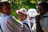 Schoolboys visit elephant feeding farm — Stock Photo