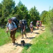 Hikers walk on a path — Stock Photo