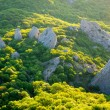 Crimea mountains — Stock Photo #14872591
