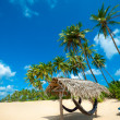 Tropical beach — Stock Photo #16215441
