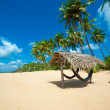 tropical beach — Stock Photo #16215445