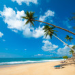 Tropical beach — Stock Photo #16215451