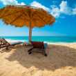 Tropical beach — Stock Photo #16215471