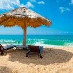 Tropical beach — Stock Photo #16215483