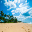 Tropical beach — Stock Photo #16324285