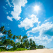Tropical beach — Stock Photo #16324295