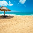 Tropical beach — Stock Photo #16324335