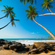Tropical beach — Stock Photo #17891563