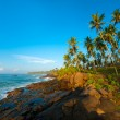 tropical beach — Stock Photo #17891775
