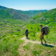 Hikers trekking — Stock Photo #26205521