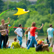 Kite festival — Stock Photo #26332673