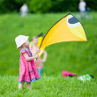 Kite festival — Stock Photo #26334401
