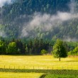 Landscape with meadows and mountains in the fog — Stock Photo