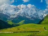 Beautiful meadow landscape near Ushguli, Svaneti, Georgia. — Stock Photo