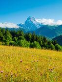 Dır dağ — Stok fotoğraf