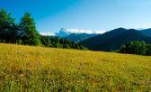 Ushba mountain — Stock Photo