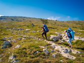 Hikers group trekking in Crimea — Stock Photo
