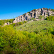 Summer mountain landscape in Crimea — Stock Photo