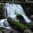Mountain stream in Crimea, Ukraine — Stock Video