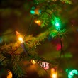 Christmas tree lights — Stock Photo #38668597
