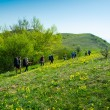 Hikers group trekking in Crimea — Stock Photo #38888397