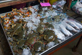 Fresh crabs and fish — Stock Photo