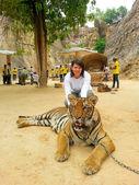 Tiger Temple, Thailand — Stock Photo